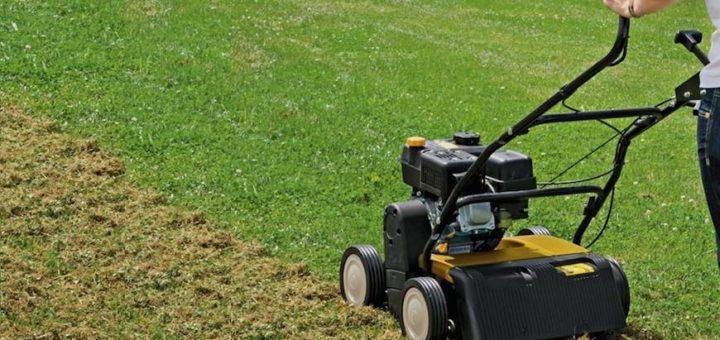 comment scarifier sa pelouse